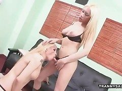 Two blonde shemale babes suck added to fuck continually other